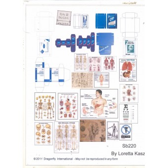 Kit - Medical Posters & Boxes Sheet  SB220 dollhouse Dragonfly 1/12 scale